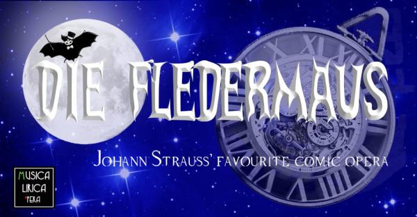 Die-Fledermaus-theatre-image